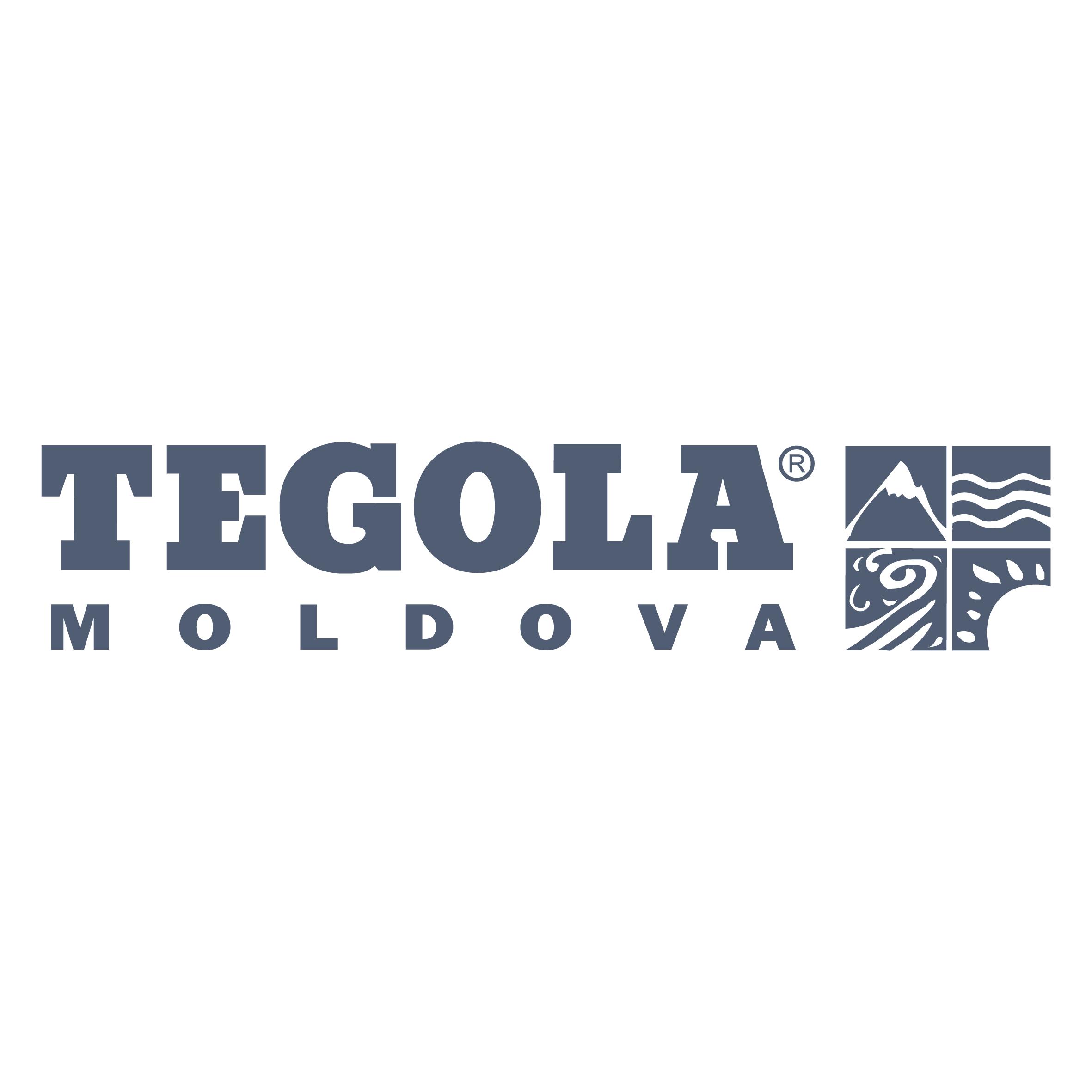 TEGOLA MOLDOVA _Logo